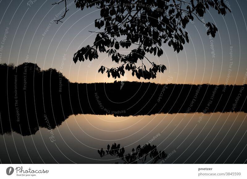 Herbst am See Sonnenuntergang Wasser Natur Landschaft Himmel Umwelt Abend Farbfoto Sonnenaufgang Außenaufnahme Baum Licht Gegenlicht Schönes Wetter Seeufer