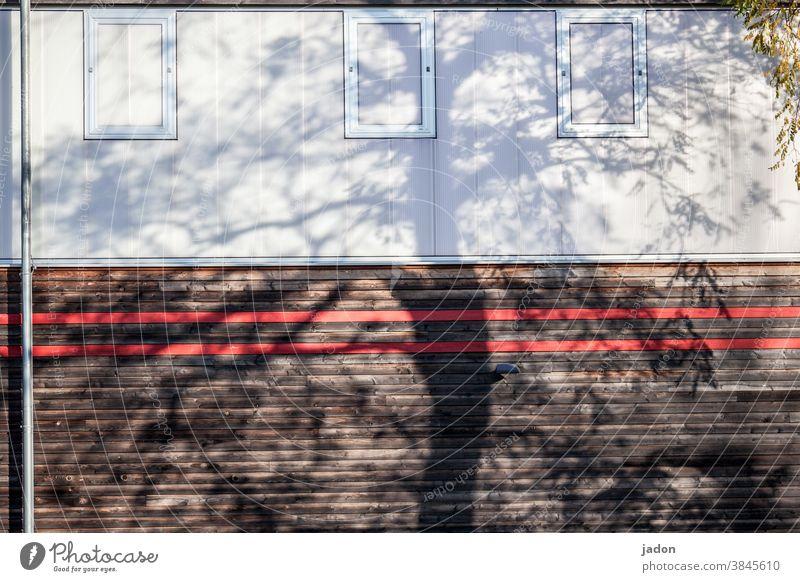 fassadenbegrünung. Fassade Schatten Fenster Jalousie Fallrohr Wand Haus Außenaufnahme Menschenleer Gebäude Architektur geschlossen Rollladen Strukturen & Formen