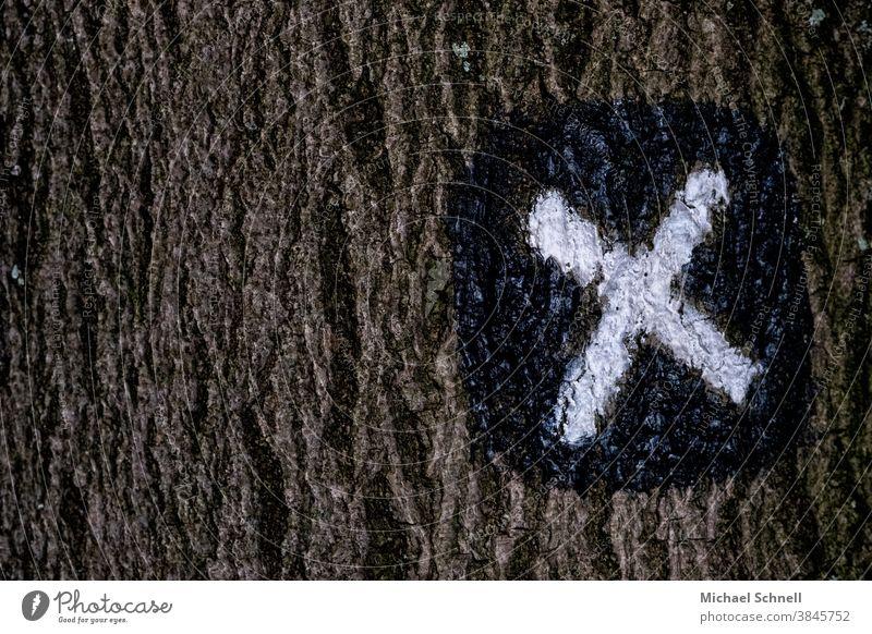 Wanderweg: Zeichen wanderweg Wanderwegmarkierung x Wege & Pfade Wegweiser wegweisend richtungweisend Richtung wandern Orientierung Schilder & Markierungen