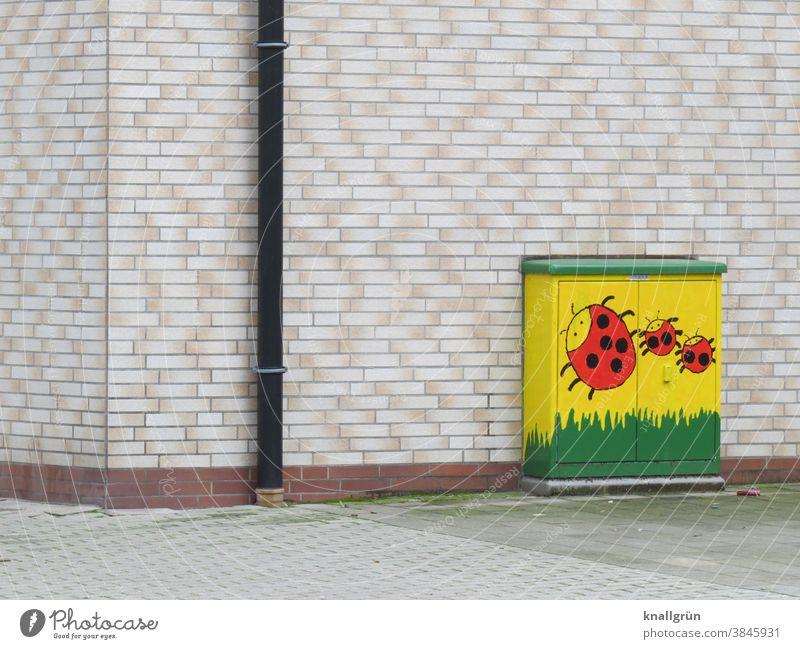 Ein mit drei Marienkäfern bemalter Stromverteilerkasten Stromkasten Hausecke kindlich handbemalt Fassade Klinker Regenrohr Fallrohr Wand Mauer Außenaufnahme
