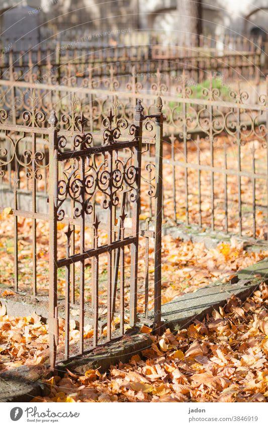 es gibt immer einen ausweg. Friedhof Grab Trauer Tod Vergänglichkeit Zaun umrandung Kunstschmiedearbeit laub rostiges Metall Grabmal Traurigkeit Menschenleer