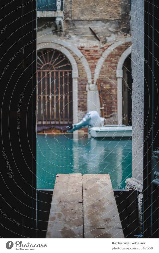 Hochwasser in Venedig venedig hochwasser Überschwemmung hochwasserschutz tür Wasser Haus Kanal Altstadt Italien