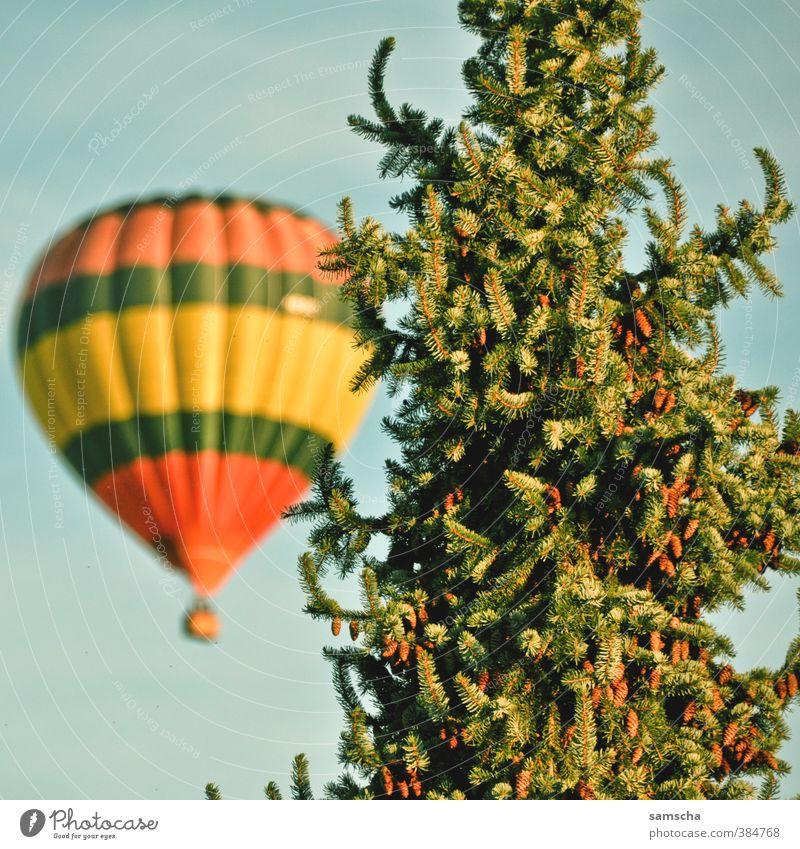 Über den Wolken Ferien & Urlaub & Reisen Tourismus Ausflug Abenteuer Ferne Freiheit Sommer Umwelt Natur Baum Ballone fliegen Luftballon Ballonfahrt Ballonkorb