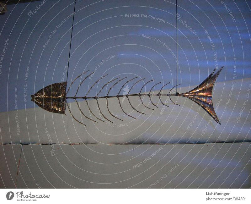 Elektrofisch Kunst Umwelt Fisch Freizeit & Hobby Skulptur Fischgräte