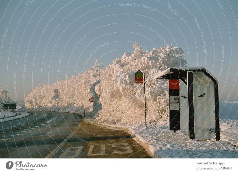 """""""Kaltestelle"""" Winter kalt Bushaltestelle Raureif Verkehr Station Schnee Straße"""