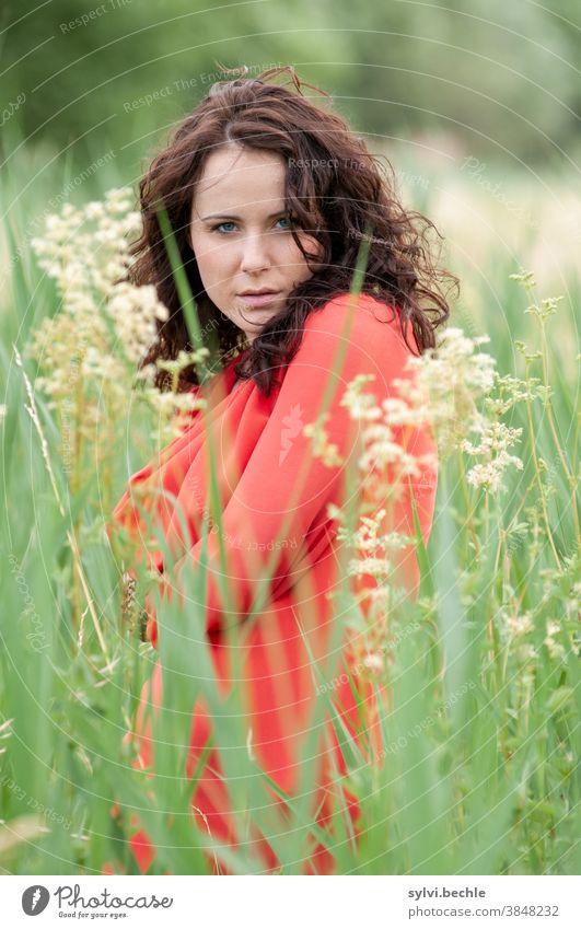 junge Frau im Feld schön frau Junge Frau Porträt Erwachsene langhaarig Schönheit feminin Haare & Frisuren Gesicht bluse feld geborgenheit hoffnung sehnsucht