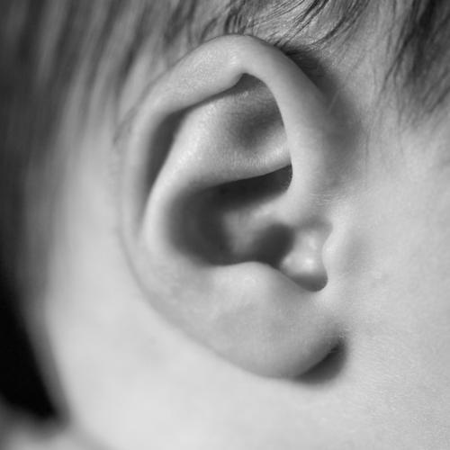Detail des Ohres eines Neugeborenen neugeboren Baby Detailaufnahme schwarz auf weiß Kindheit Gesicht hübsch Born Zeh Junge Kulisse Mädchen Entwicklung Körper