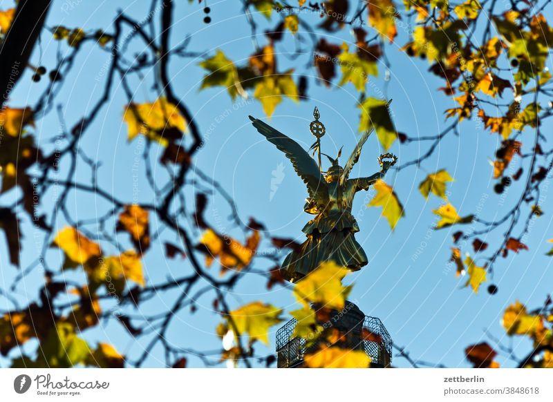 Siegessäule, Rückenansicht durch Herbstlaub abend baum berlin blattgold denkmal deutschland dämmerung else feierabend figur goldelse großer stern hauptstadt