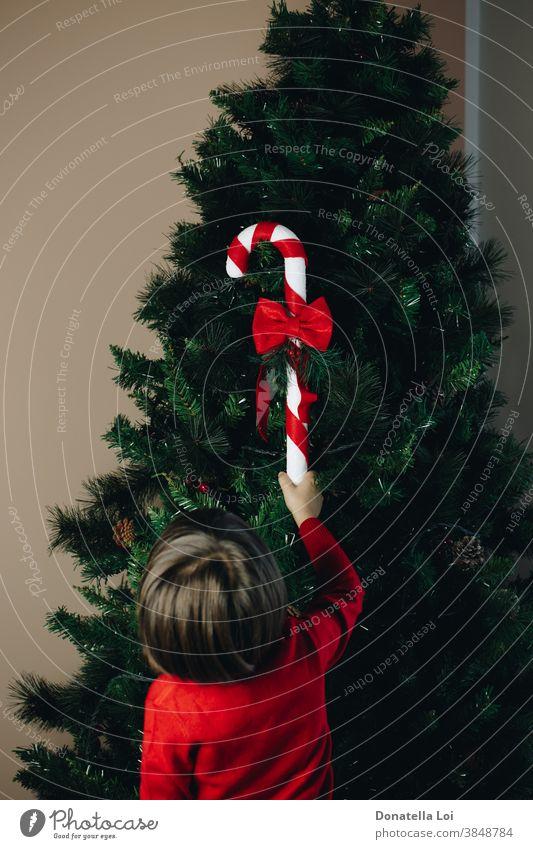Kind schmückt den Baum von hinten gesehen 4-5 Jahre Weihnachten Weihnachtsbaum Kindheit Dekoration & Verzierung Festlichkeit grün Hand Glück heimwärts