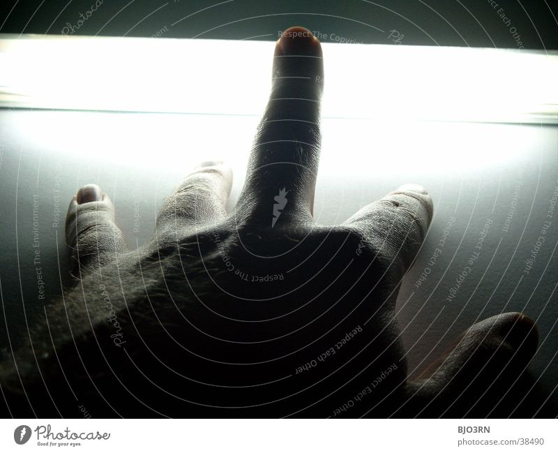 Schattenhand Mensch Hand dunkel hell Haut Finger Hautfalten Neonlicht Nagel Fingernagel Fototechnik Mittelfinger