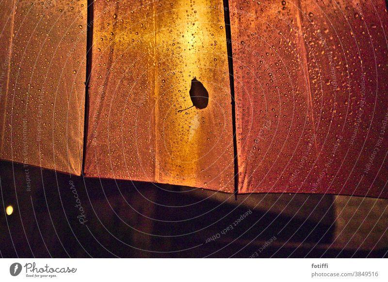 Ganz alleine hier? Blatt Regen Wassertropfen Herbst Nahaufnahme nass verregnet leuchten kleben