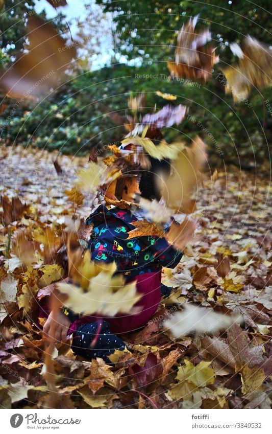 Kleinkind verschwindet in fliegendem Laub Laubfall Herbst herbstlich blätterflug Freude quietschvergnügt fallen Jahreszeiten Außenaufnahme Herbstlaub