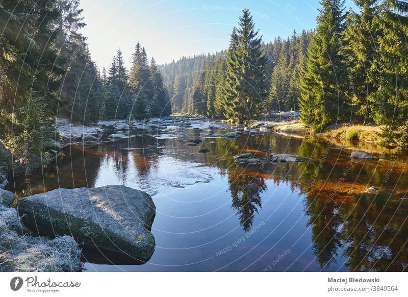 Das Tal des Flusses Isera an einem frostig-sonnigen Morgen, Polen. Isergebirge Berge Natur Landschaft Wald Baum Himmel malerisch schön reisen Sudeten Tschechen