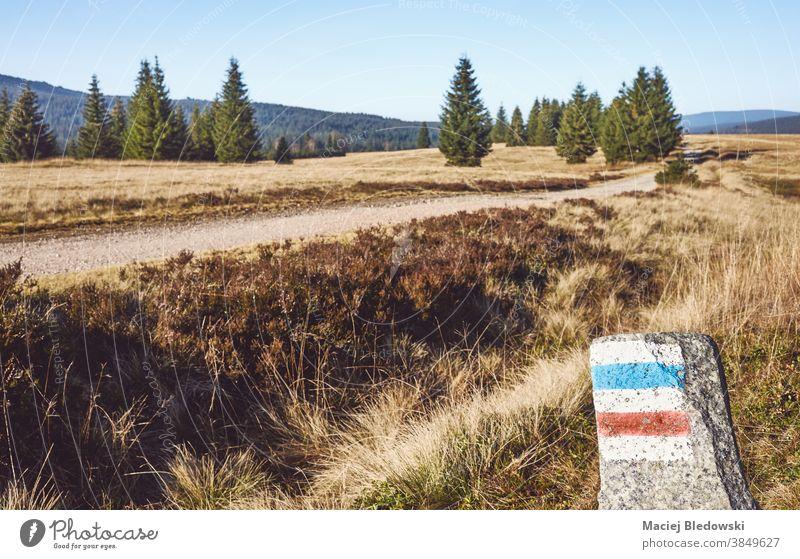 Markierte Wege auf einem Felsen im Moorgebiet des Isera-Flusstals, Polen. Moorland Landschaft Tal Nachlauf Markierung retro altehrwürdig Natur Regie Wanderung