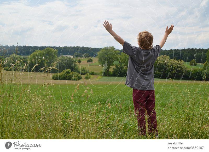 400   Juhuu! Kind Feld Wiese Arme erhoben Freude freuen anbeten staunen Rückansicht anonym unerkannt Junge Ackerland Landschaft preisen Lobpreis