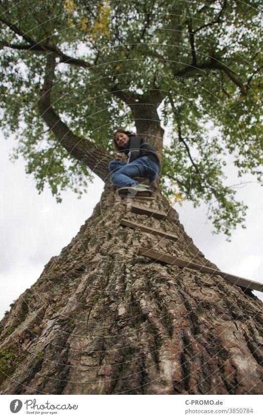 Mädchen klettert auf hohen Baum mut mädchen Überwindung hoch Laubbaum in den himmel Abenteuer Blickkontakt Tiefenschärfe unscharf