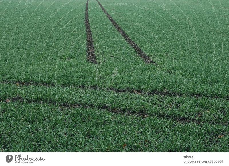 Reifenspuren im Gras Auto Traktor Wiese Außenaufnahme Farbfoto Spuren Menschenleer Natur Erde Fahrzeug Landwirtschaft Feld Reifenprofil Kontrast Profil dreckig