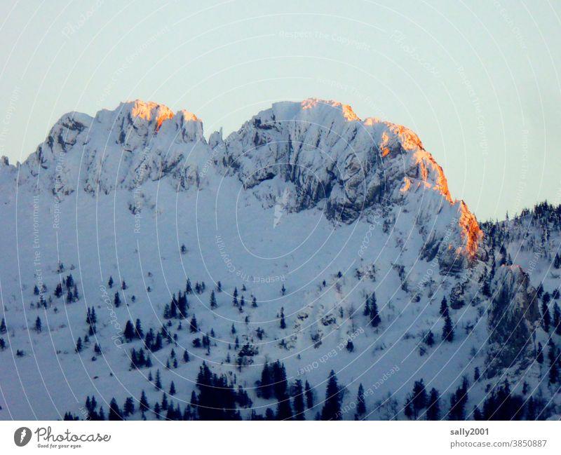 die Kampenwand im Sonnenuntergang... Chiemgau Chiemgauer Alpen Oberbayern Bayern Berge u. Gebirge Winter Schnee Alpenglühen Gipfel Landschaft Natur