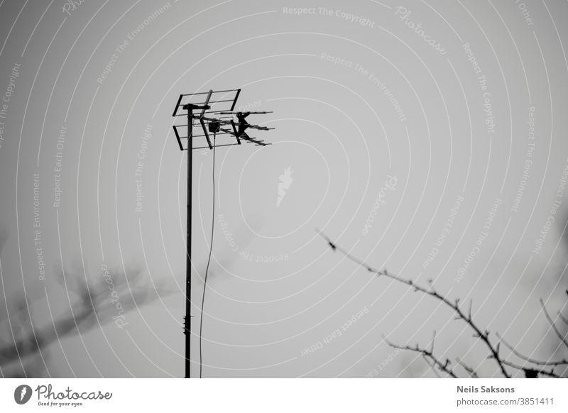 TV-Antenne auf Himmelshintergrund mit einigen Baumzweigen blau Fernsehen FERNSEHER Draht Natur weiß Technik & Technologie Mitteilung mit Stacheln versehen