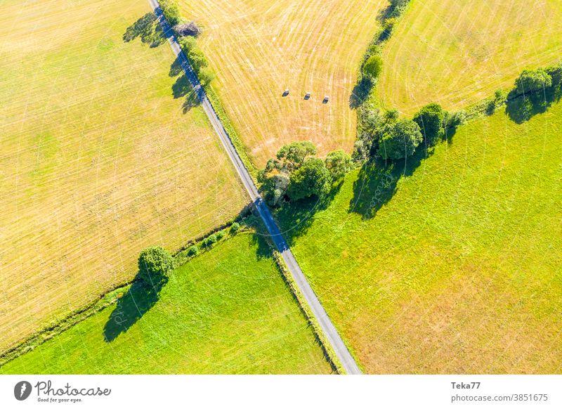 eine kleine Landstraße, die grüne Wiesen teilt Straße in der Natur zwei Wiesen geteilt Trennung von oben grüner Randstreifen Natur von oben Landwirtschaft