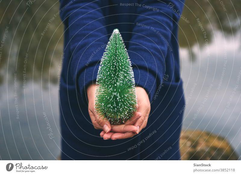 Frau hält einen Weihnachtsbaum im Wald, Wintertag Baum Mädchen Hand im Freien weiß rot schön Weihnachten jung Glück Hintergrund Feiertag Spaß Saison