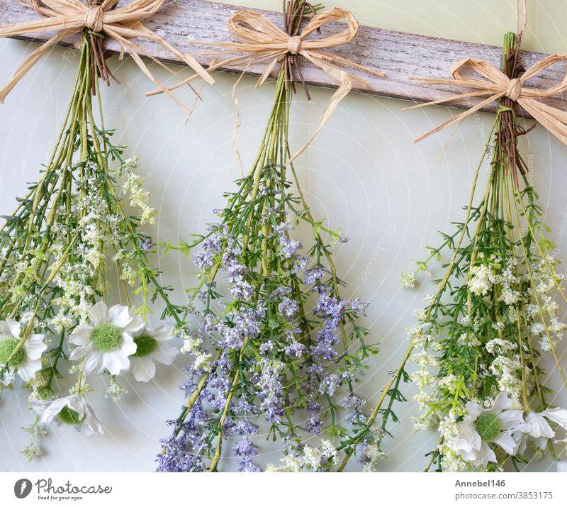Verschiedene helle Trockenblumensträuße an einem Seil hängend vor einem hölzernen Hintergrund, die Trockenblumen zu einer modernen Dekoration für die Inneneinrichtung machen