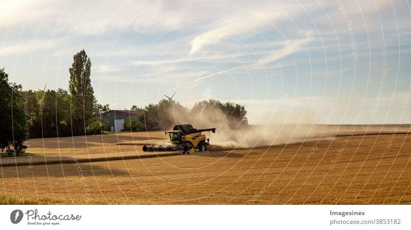 Mähdrescher, der auf einem Weizenfeld arbeitet. Sonnenstrahlen, Ernte des Weizens. Landwirtschaft. Landschaft Panorama Web Banner landwirtschaftliches Feld