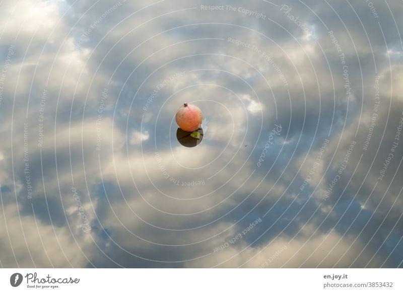 Boje auf Wasseroberfläche in der sich Wolken spiegeln Himmel Spiegelung Reflexion & Spiegelung Menschenleer See ruhig blau Außenaufnahme Wasserspiegelung