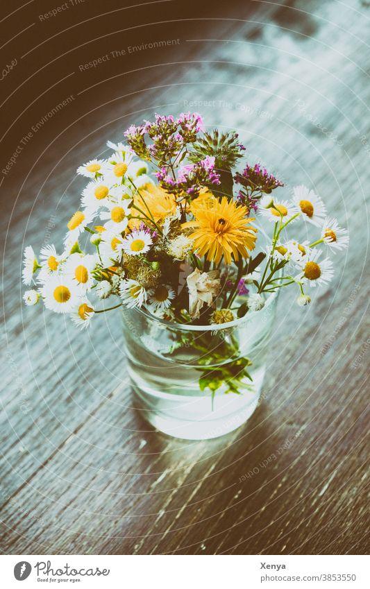 Blümchen im Glas Blumenstrauß Gänseblümchen Wiesenblumen Tisch Blüte Frühling Vase Farbfoto Blühend Dekoration & Verzierung Pflanze Natur Menschenleer Tag