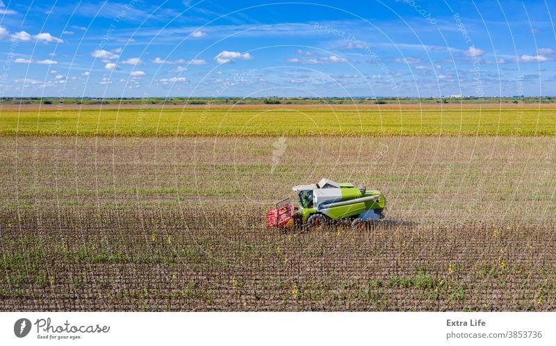 Luftaufnahme von Mähdrescher, Erntemaschine erntet reife Sonnenblume oben Antenne landwirtschaftlich Ackerbau Agronomie Müsli Land kultiviert Bodenbearbeitung