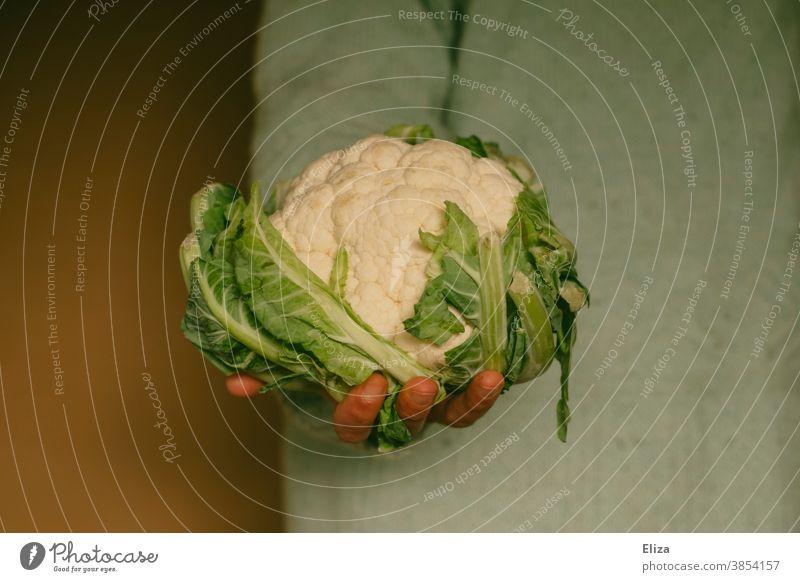Frau hält einen Blumenkohlkopf Gemüse gesund blumenkohlkopf halten Hand Gesunde Ernährung vegan Kohl Vegane Ernährung Vegetarische Ernährung Diät