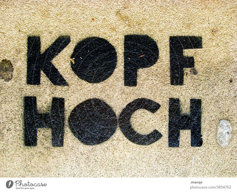 Kopf hoch zuversicht positiv Beratung Optimismus Hoffnung Schriftzeichen Kommunikation Ratschlag Motivation