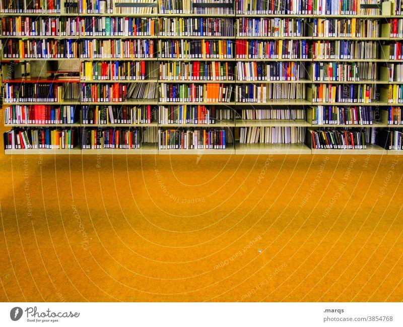 Bibliothek Bildung Studium Buch Erwachsenenbildung viele Ordnung Regal lernen Printmedien mehrfarbig fachbuch gelb Bodenbelag Literatur Universität