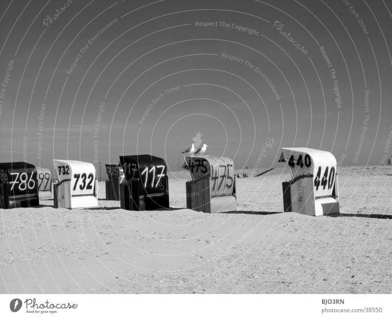 Meer sehn #13 - Strandtiere Strandkorb Deich Ferien & Urlaub & Reisen Möwe Vogel See strandkörb Sand Schwarzweißfoto Himmel