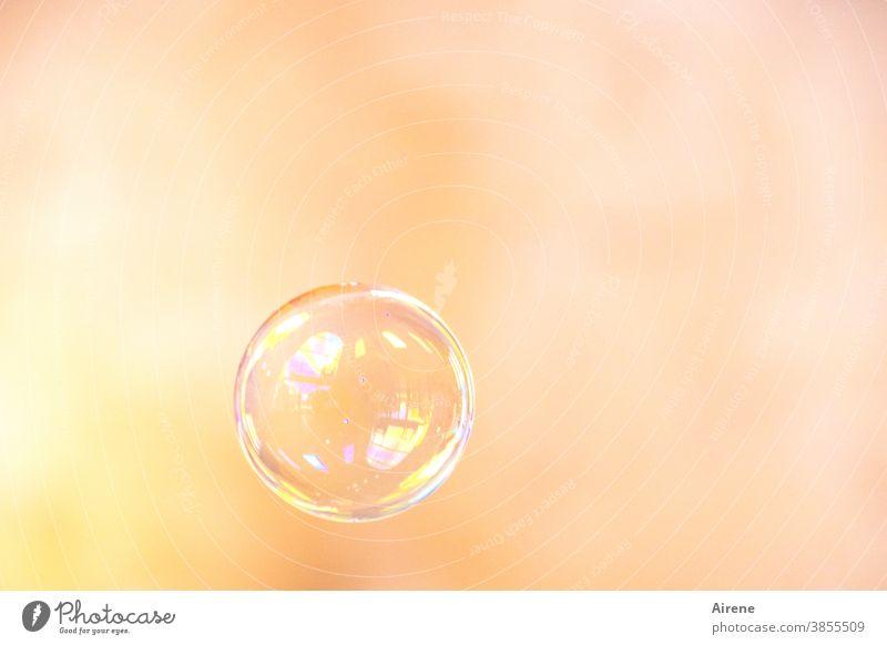 Traum - Wunsch - Hoffnung... Seifenblase fliegen schillernd leicht glänzend Leichtigkeit Farbe zerbrechlich rund Kugel Blase ästhetisch Lichterscheinung Spielen
