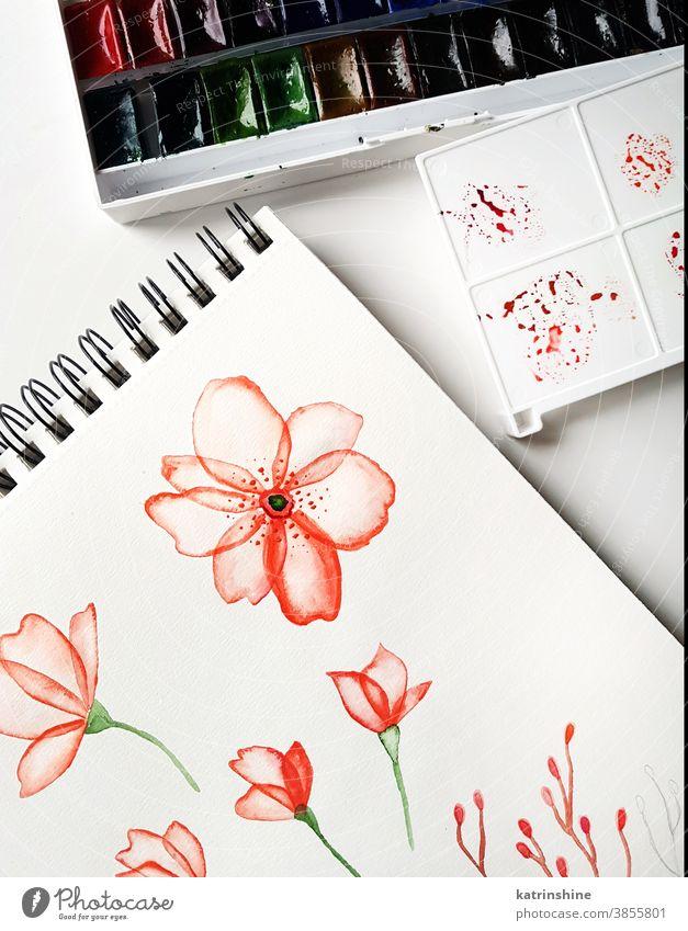 Zeichnungen, Paletten- und Aquarellfarben Farbe Blume Draufsicht rot hell Arbeitsplatz Künstler künstlerisch Papier Hand Kreativität Tisch Kunst Bildung