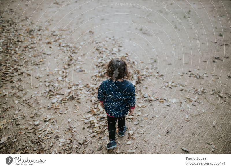 Rückansicht Kind läuft durchs Herbstlaub herbstlich Kindheit Kinderspiel Spielen 1-3 Jahre Mensch Kleinkind Freizeit & Hobby Außenaufnahme Farbfoto mehrfarbig