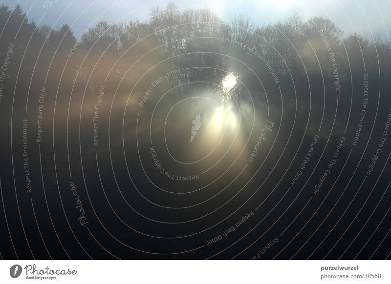 Sonnenkraft Sonnenstrahlen Nebel Wald Durchbruch Berge u. Gebirge Morgen Arbeitszimmerausblick
