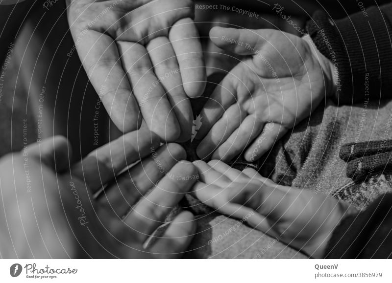 Hände von Mama, Papa und Kind in schwarz und weiß Schwarzweißfoto Familie & Verwandtschaft Einzelkind Kindheit Erinnerung Nostalgie Gefühle Familienalbum Erbe