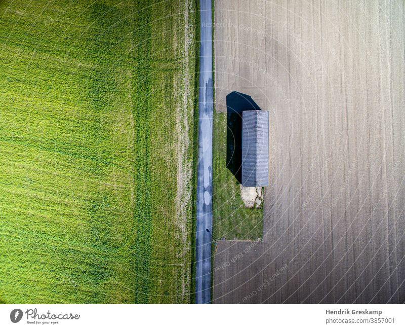landwirtschaftliche Hütte aus der Luft fotografiert Mais Boden Landwirt Licht grasbewachsen Linie Ernte Landwirtschaft grün Erntemaschine Ackerland im Freien