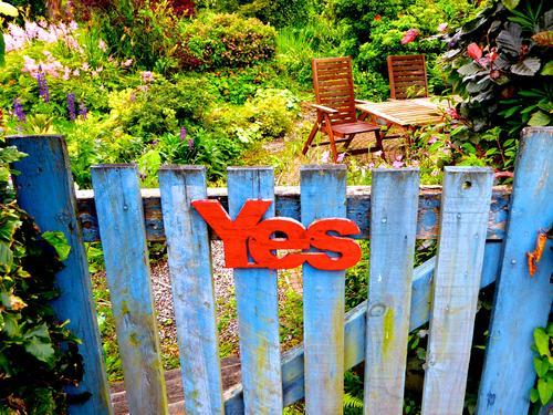 Zeitgeschichte | YES zum schottischen Unabhängigkeitsreferendum Schottland Referendum Wahl Kampagne ja dafür Wahlwerbung Abstimmung Politik UK Großbritannien