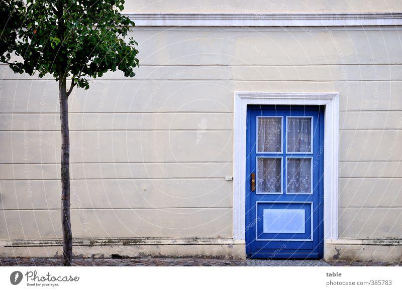 Kleinstadtidylle blau alt Stadt grün Baum ruhig Haus Fenster Wand Mauer Gebäude grau Holz Stein Fassade Tür