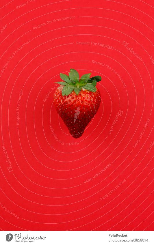 #A0# Erdbeere auf Rot erdbeere verrotten Obst lecker Snack ernte frisch gsund gesunde ernährung lokal Lebensmittel Garten Veganer Vitamin