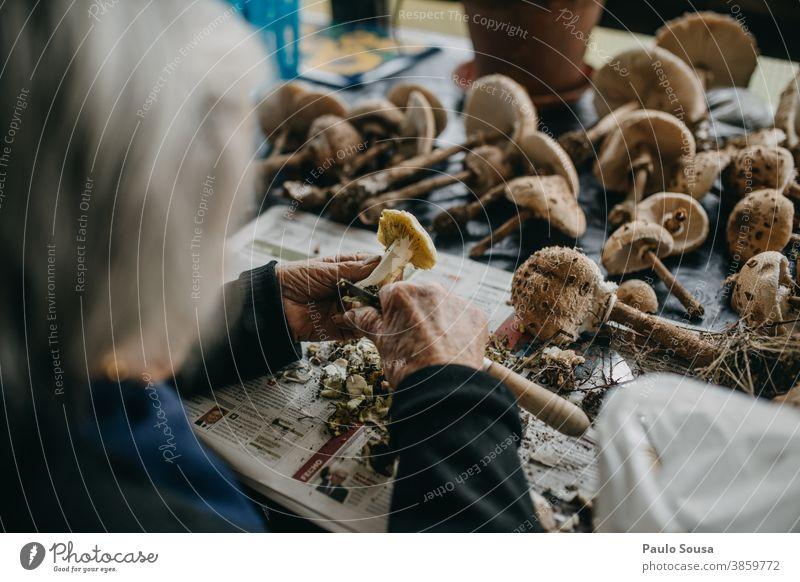 Oma bereitet Pilze zu vorbereitend Vorbereitung frisch Frische Speisepilz Lebensmittel lecker Umwelt Ernährung Außenaufnahme Farbfoto Herbst Wald Natur essbar
