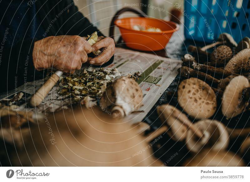 Ältere Frau beim Zubereiten von Pilzen essbar Speisepilz Vorbereitung Lebensmittel Farbfoto Herbst Natur lecker Außenaufnahme Wald Umwelt Ernährung Nahaufnahme