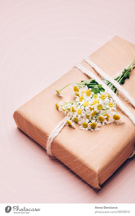 Umweltfreundliches Geschenk in braunes Papier verpackt Verpackung Blumen Kamille Feiertag Kasten präsentieren Überraschung handgefertigt kreativ Muttertag