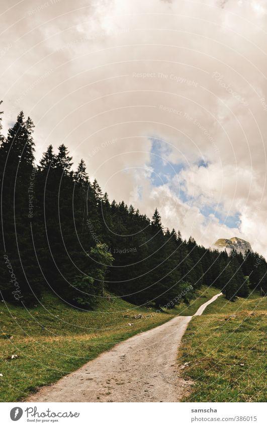 unterwegs Natur Ferien & Urlaub & Reisen Baum Landschaft Wolken Wald Umwelt Berge u. Gebirge Wege & Pfade Freiheit natürlich gehen wild wandern Ausflug Alpen