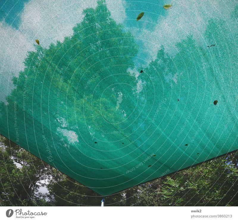 Windfang Gestell Bauplane Himmel Natur draußen Außenaufnahme Bäume Umwelt Landschaft Kunststoff Detailaufnahme Sicherheit Blätter Plane durchscheinend