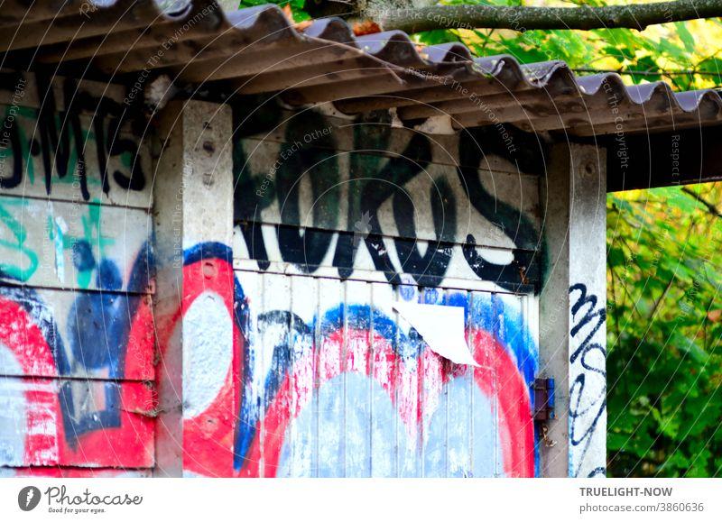Kunst am Bau | im Fokus. Beton Hütte mit Wellblech Dach am Bahndamm, verschmiertes, blau rotes Graffiti, groß und fett das Wort FOKUS, ein halb abgerissener Zettel und neben dem Gebäude grünes Buschwerk und ein paar Zweige