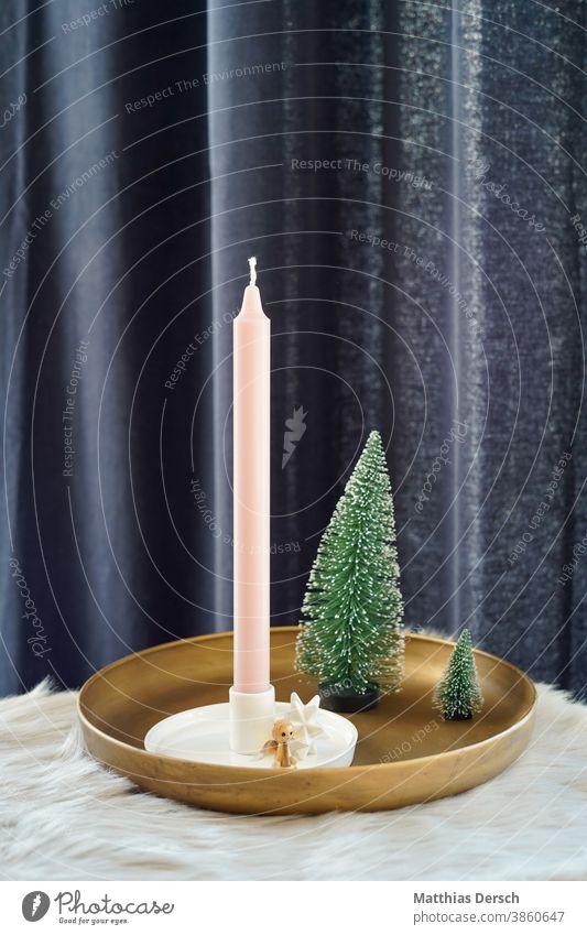 Weihnachtsdekoration Weihnachten & Advent Dekoration & Verzierung dekorieren Winter Tanne Tannenbaum Kerze Engel